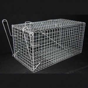 T008 Cat Cage w/ Push Plate - The Trap Man - T008